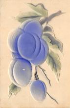 top014313 - Fruit Assorted