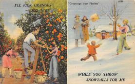 top014319 - Fruit Assorted