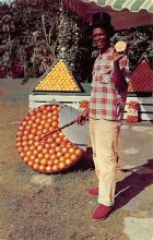 top014321 - Fruit Assorted