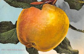 top014339 - Fruit Assorted