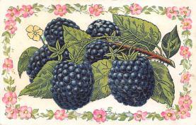 top014345 - Fruit Assorted