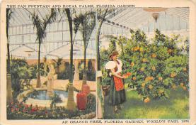 top014355 - Fruit Assorted