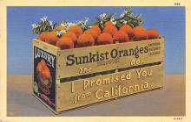 top014399 - Fruit Assorted