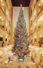 top015495 - Christmas Trees Post Card