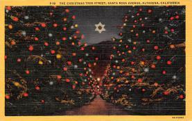 top015523 - Christmas Trees Post Card