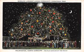 top015525 - Christmas Trees Post Card