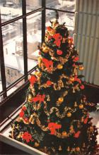 top015567 - Christmas Trees Post Card