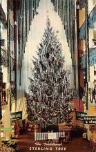 top015599 - Christmas Trees Post Card