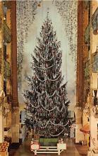 top015605 - Christmas Trees Post Card