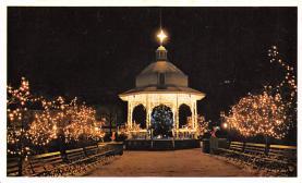 top015607 - Christmas Trees Post Card