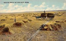 top015853 - Farming Post Card