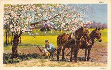 top015879 - Farming Post Card