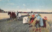 top015883 - Farming Post Card