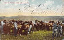 top015887 - Farming Post Card