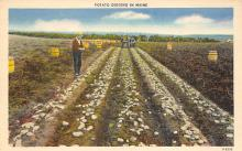 top015891 - Farming Post Card