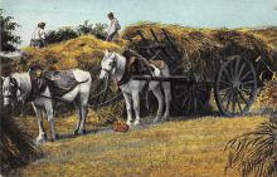 top015931 - Farming Post Card