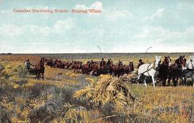 top015933 - Farming Post Card