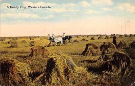 top015951 - Farming Post Card