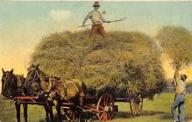 top015963 - Farming Post Card