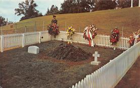 top016031 - Cemetaries Cemetery Post Card