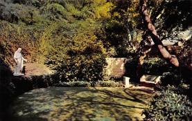 top016035 - Cemetaries Cemetery Post Card