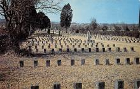 top016099 - Cemetaries Cemetery Post Card