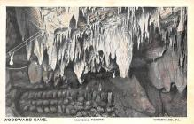 top016385 - Caves Post Card