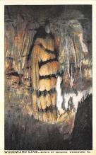 top016449 - Caves Post Card