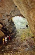top016637 - Caves Post Card