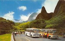 top018667 - Buses/Bus Stations Post Card