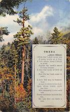 top021597 - Poetry Post Card