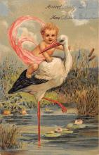 top022673 - Baby Storks Postcard