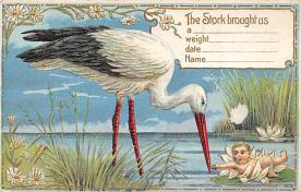 top022697 - Baby Storks Postcard