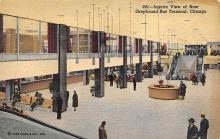 top024243 - Buses Post Card