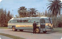 top024261 - Buses Post Card