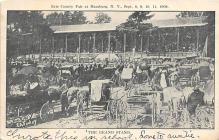 top024519 - County Fairs Post Card