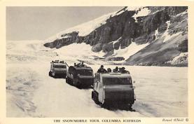 top025727 - Trucks / Buses /  Vans Post Card
