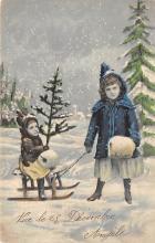 top027433 - Xmas Trees Post Card