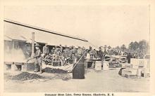 top028299 - Military Camps Post Card