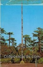 tot001088 - World's Tallest Totem Pole, Beacon Hill Park Victoria, BC, Canada Postcard Post Card