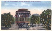 tra006294 - The Orange Groves, California, Usa Train Trains Locomotive, Steam Engine,  Postcard Postcards