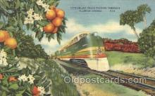 tra006309 - The Orange Groves, Florida, USA,  Seaboard Air Line, Train Trains Locomotive, Steam Engine,  Postcard Postcards