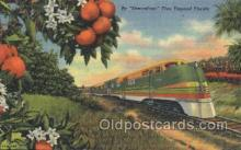 tra006369 - Streamline Train through Tropical Florida, USA Trains Locomotive, Steam Engine,  Postcard Postcards