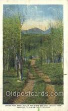tra006648 - Longs Park Trail, Estes Park, CO USA Train, Trains, Locomotive, Old Vintage Antique Postcard Post Card