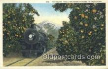 trn001088 - Traveling Thru The Orange Groves In California, CA USA Trains, Railroads Postcard Post Card Old Vintage Antique