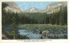 trn001168 - Lily Pond, Rocky Mountain National Park, Colorado, CO USA Trains, Railroads Postcard Post Card Old Vintage Antique