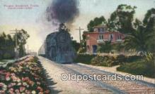 trn001187 - Flower Bordered Track, California, CA USA Trains, Railroads Postcard Post Card Old Vintage Antique