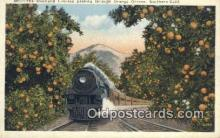 trn001211 - The Overland Limited Passing Through Orange Groves, California, CA USA Trains, Railroads Postcard Post Card Old Vintage Antique