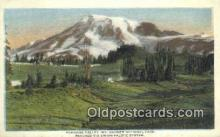 trn001402 - Paradise Valley, Mt Rainier National Park, Washington, WA USA Trains, Railroads Postcard Post Card Old Vintage Antique