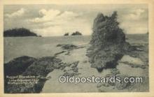 trn001454 - Rugged Shoreline, Lake Superior, Michigan, MI USA Trains, Railroads Postcard Post Card Old Vintage Antique